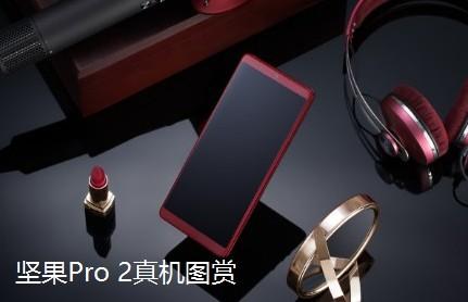 坚果Pro 2